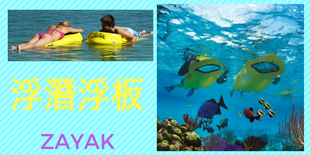 ZAYAK RENTAL CHINESE